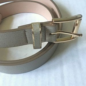 H&M Taupe Snakeskin Belt with Gold Hardware Size S
